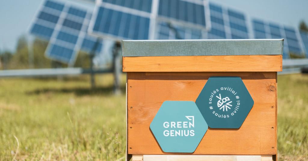 Lietuvoje – pirmoji nutolusi saulės jėgainė su bičių aviliais | Verslas |  15min.lt